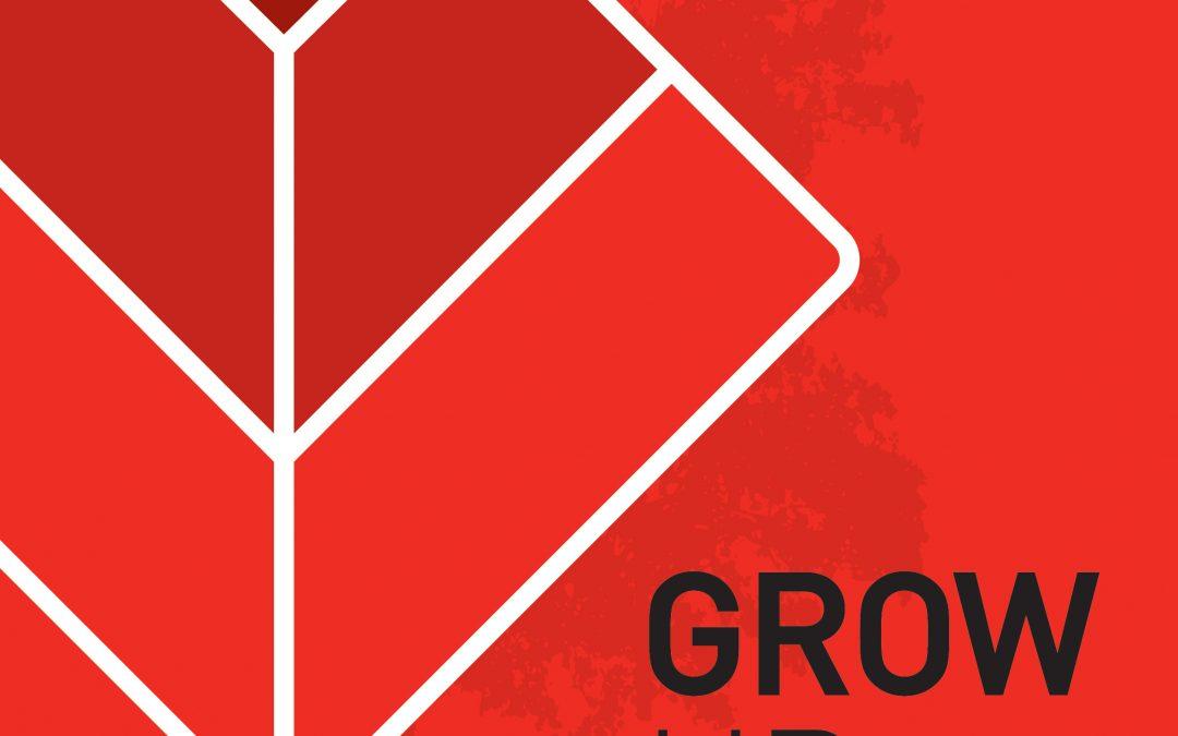 Galius com novo programa de fidelização Grow Up