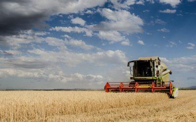 O balanço da indústria agro-alimentar sob o Covid-19