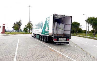 OLANO transporta mais de 2.500 toneladas de cenoura do Ribatejo para França