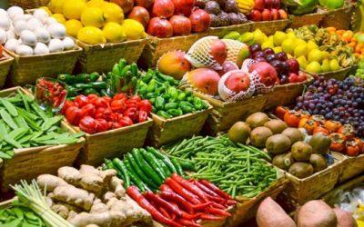 Loures INOVA abre candidaturas para acelerador de negócios inovadores no Cluster Agro-alimentar e Logística