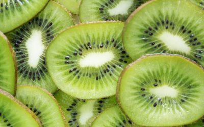 Kiwi Greensun expande armazém graças ao crescimento registado em 2020